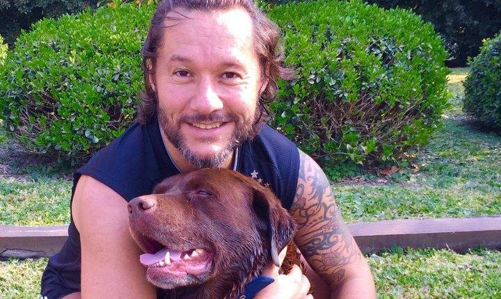 Canción de Diego Torres inspira campaña de adopción de mascotas