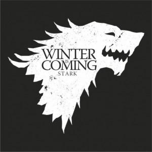 camiseta-winter-is-coming-stark