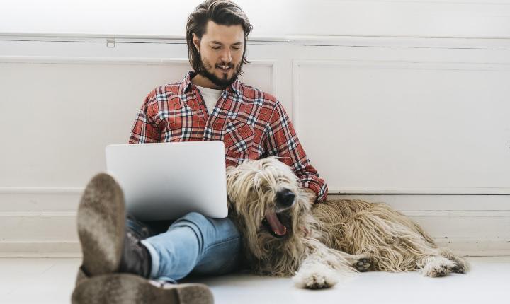 Quedarse en casa, la mejor oportunidad para compartir con su mascota